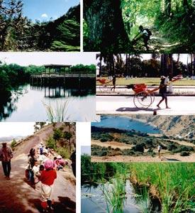 Mosaïque photos écotourisme